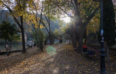 Por la senda del rio Tajo en otoño